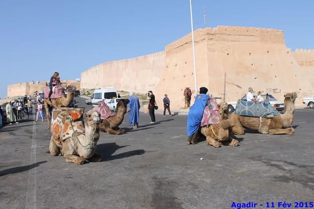 [Maroc Camp/Dernières nouvelles] Nouveau camping a Agadir - Page 4 Img_9412