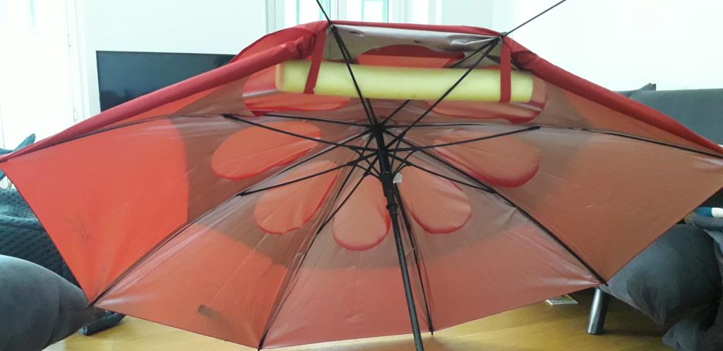 Mon parapluie modifié... (Paravo? ) - Page 2 20190813