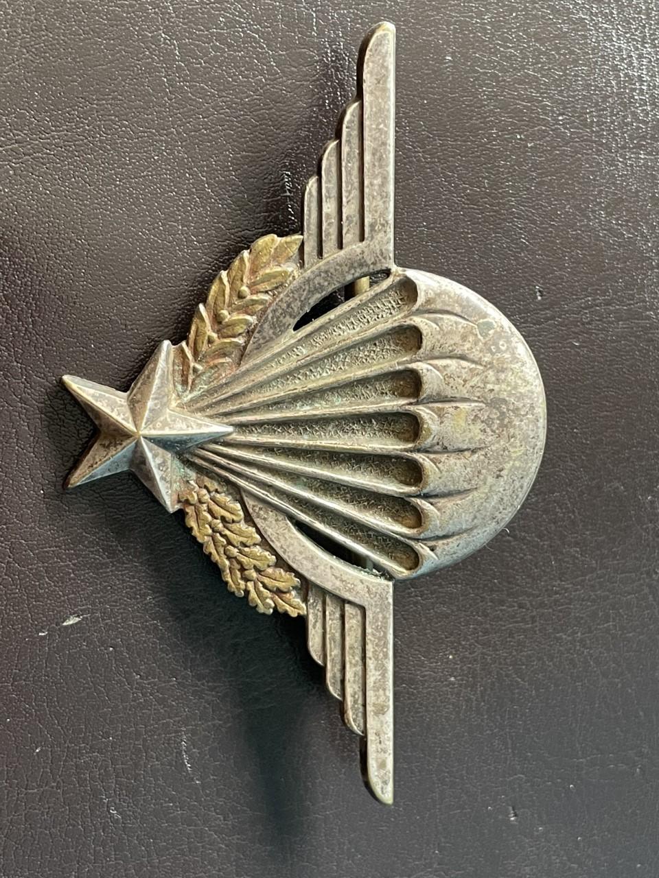 un BMP drago beranger et un insigne emi Cherchell  Thumb148