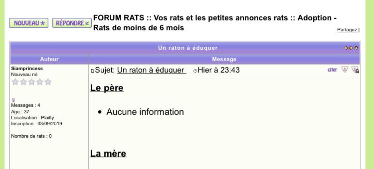 Un raton à éduquer  23266210