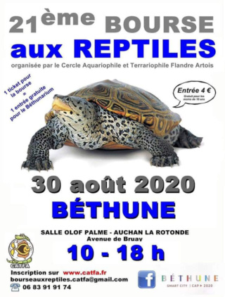 Bourse aux reptiles 2020 à Béhtune  Bourse11