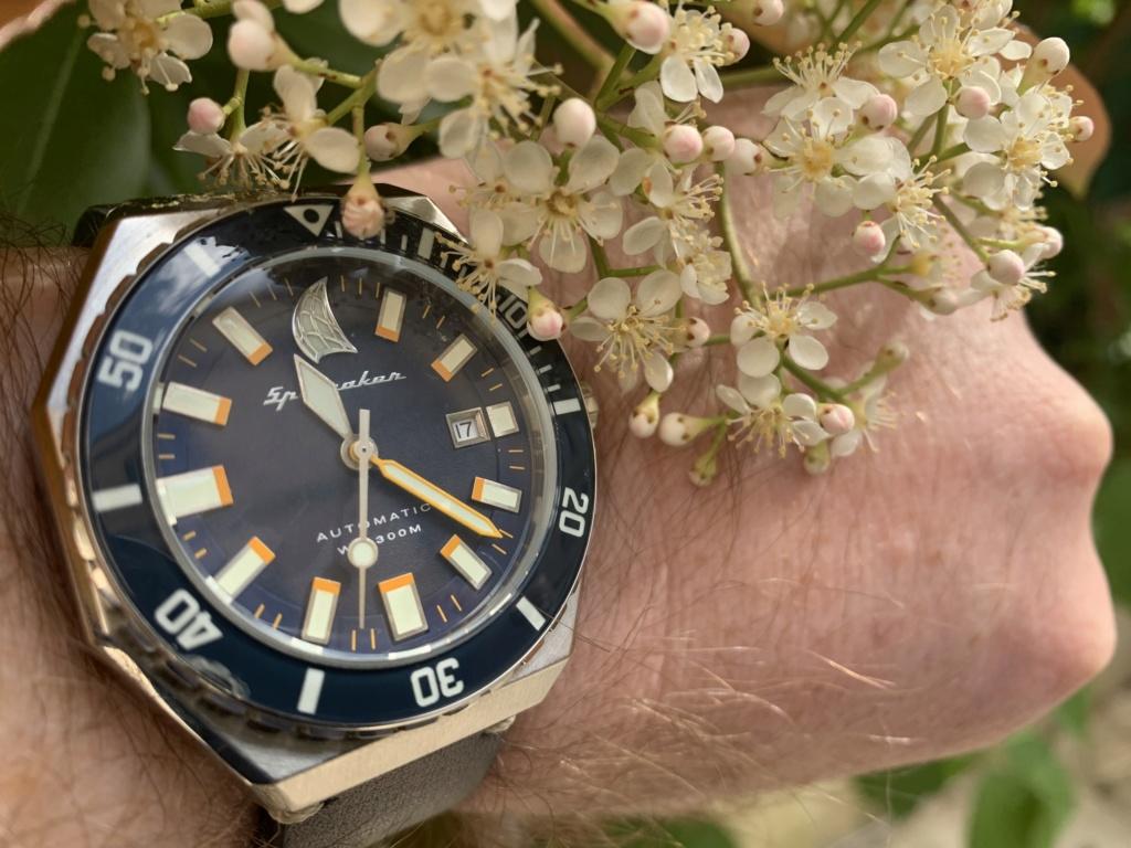 La montre du vendredi, le TGIF watch! - Page 36 Img_5427