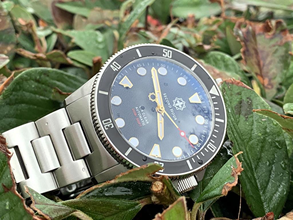 Votre montre du jour - Page 21 Waterp10