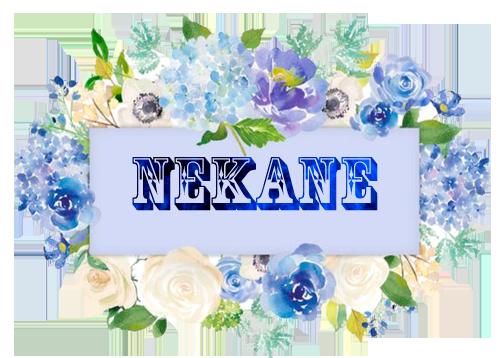 Nombres con N - Página 6 0-neka10