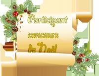 Participante concours de Noël 2020