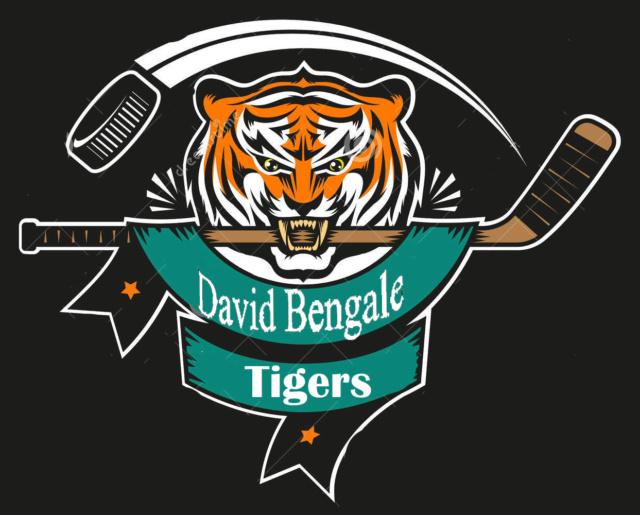 Votre équipe... Bengal10