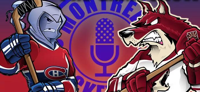 Match #51 - Coyotes vs Canadiens - Mercredi 23 janvier 2019 Habsyo10