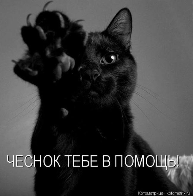 "АКЦИЯ:МАСТЕР КЛАСС ""МАКАНАЯ СВЕЧА"" Ahr0cd10"