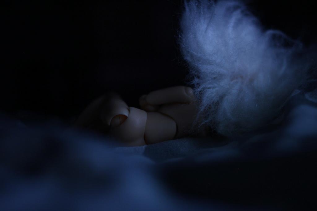 Blight Fairy : Azone Picco Neemo  Img_6110