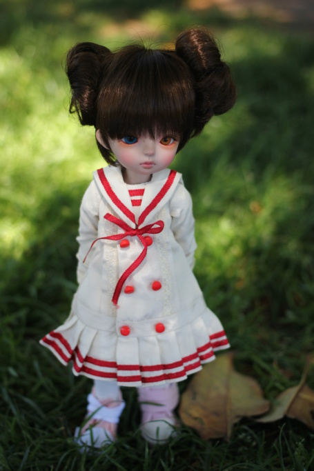 [V] Dim Aria, Bory, Cocoriang, Bactro, Dollmore, Bambicrony, Img_8411