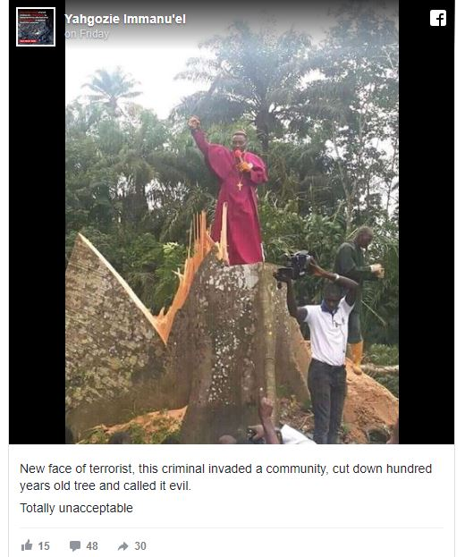Pastor Storms Community, Cut Down 'Evil' Tree Said To Be 100 Years Old (See Photo) Evill10