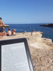 Vos lectures en vacances : saison 5 !! 20180612