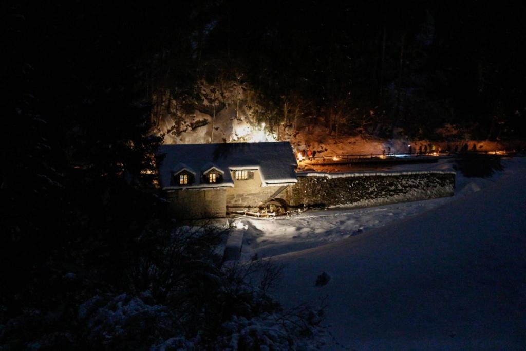 Passeggiata in Notturna alla Segheria dei Mein Image16