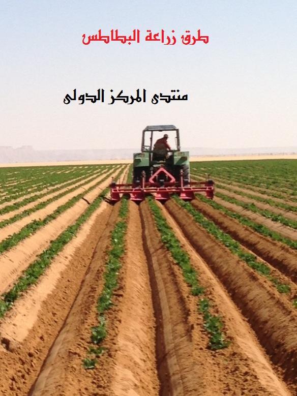 اهم طرق زراعة البطاطس A_m5da10