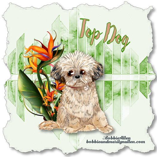 Top Dog - Page 9 3_12_116