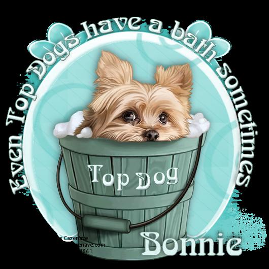 Top Dog - Page 9 Mcazen11