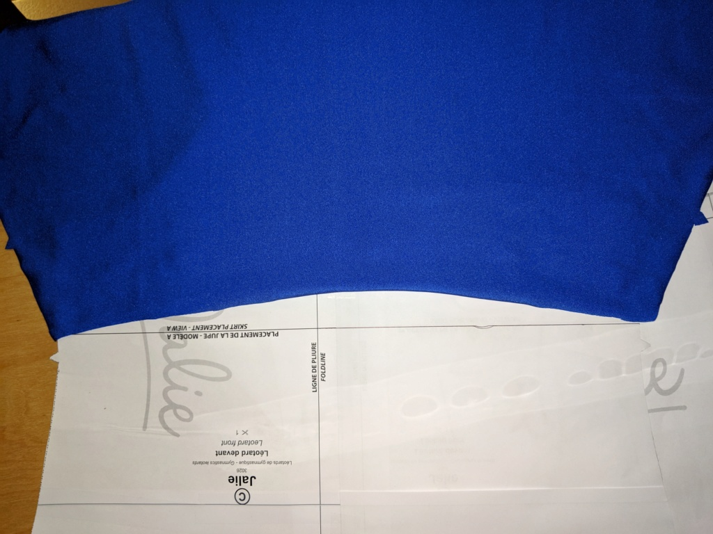 créer soi même un justaucorps - Page 18 Img_2010