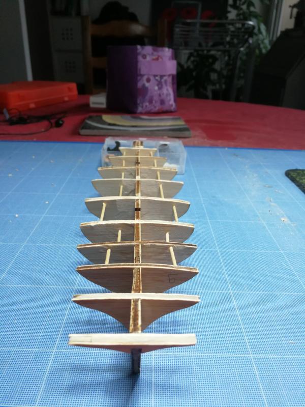 Montage de l'albatros au 1/55 de chez constructo  Img_2012