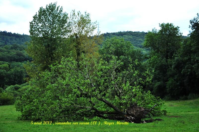 violent orage sur la bresse , 5 aout 2012 Nik_7517
