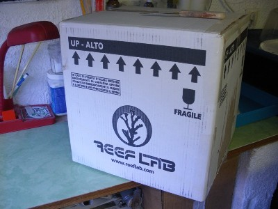 Arrivage coraux reeflab Caisse10