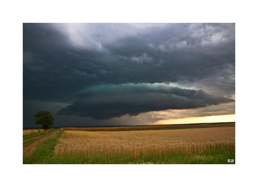 Retrospective, année orageuse 2010... Dsc_8710