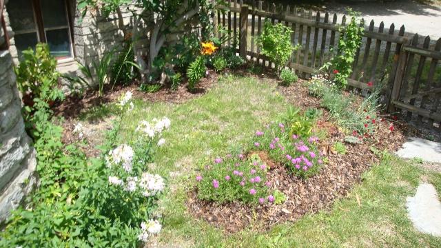 Mon jardin en construction Dsc01332
