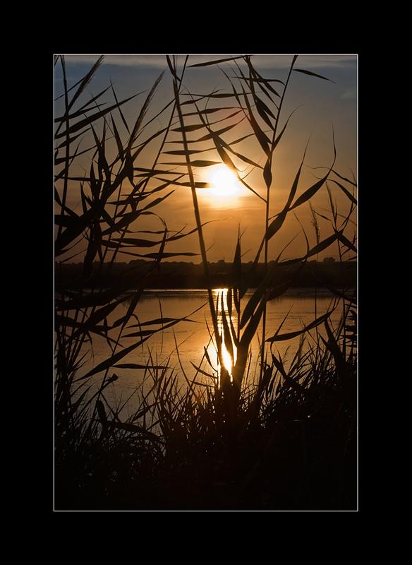 Coucher & Lever de soleil - Page 2 Img_9610