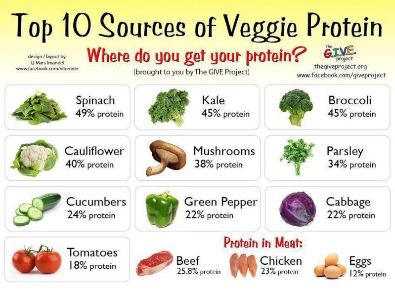Passer d'une alimentation à base de viande au végétarisme Protai10