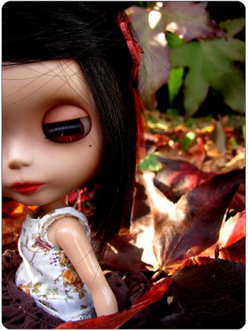 Prima Dolly Ebony (PD2E) // RBL Ebony110