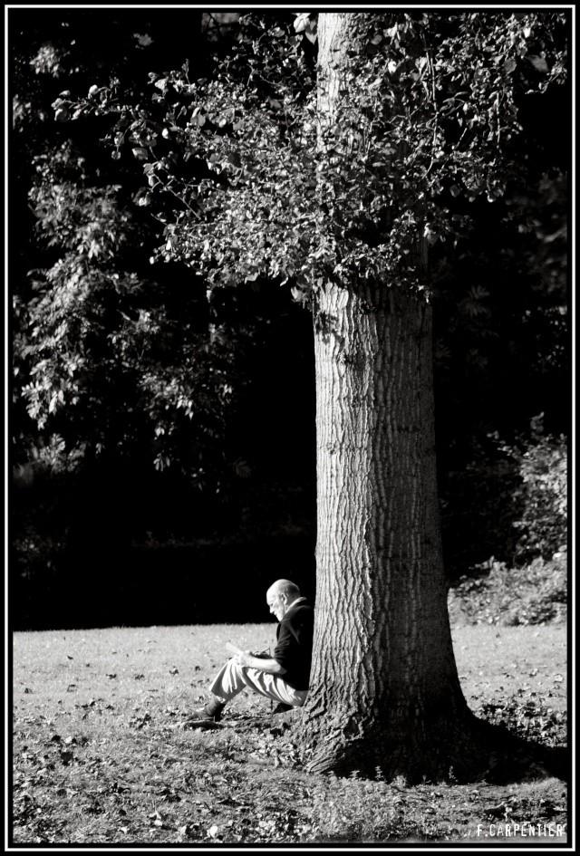 au près de mon arbre .. Aupres10