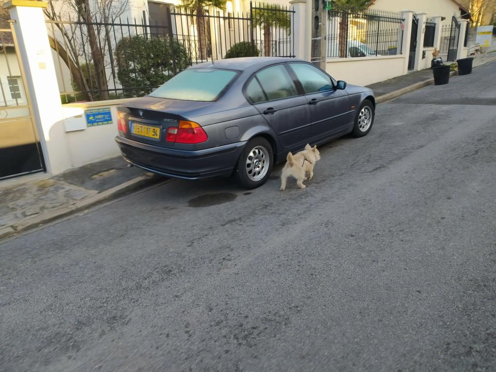 BMW E46 Img_2364