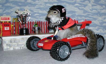 Revoilà noisette en pleine action Indy10