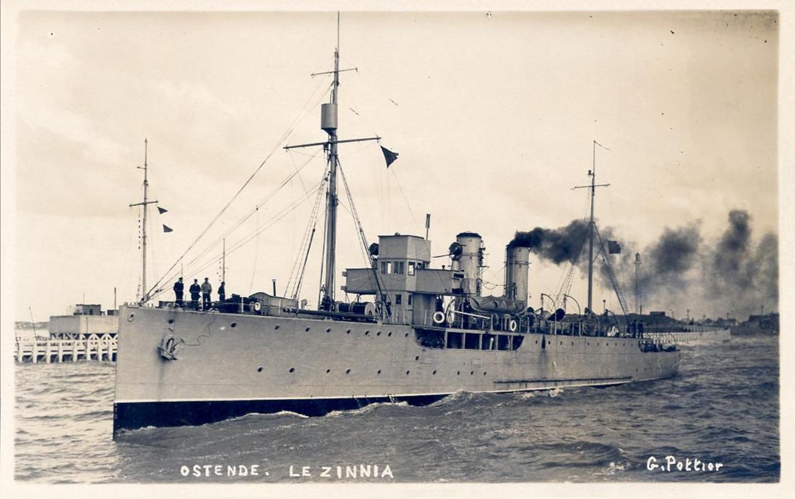 A la recherche de l'histoire du Zinnia - Page 13 Zinnia12