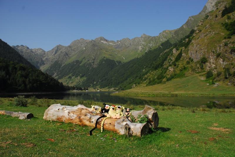Camping du Lac**** - Arcizans-Avant - Hautes Pyrénées - Page 2 Dsc_0114