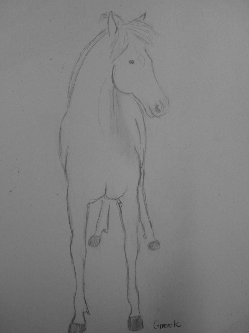 Propose de dessiner gratuitement vos chevaux !  - Page 2 P1030713