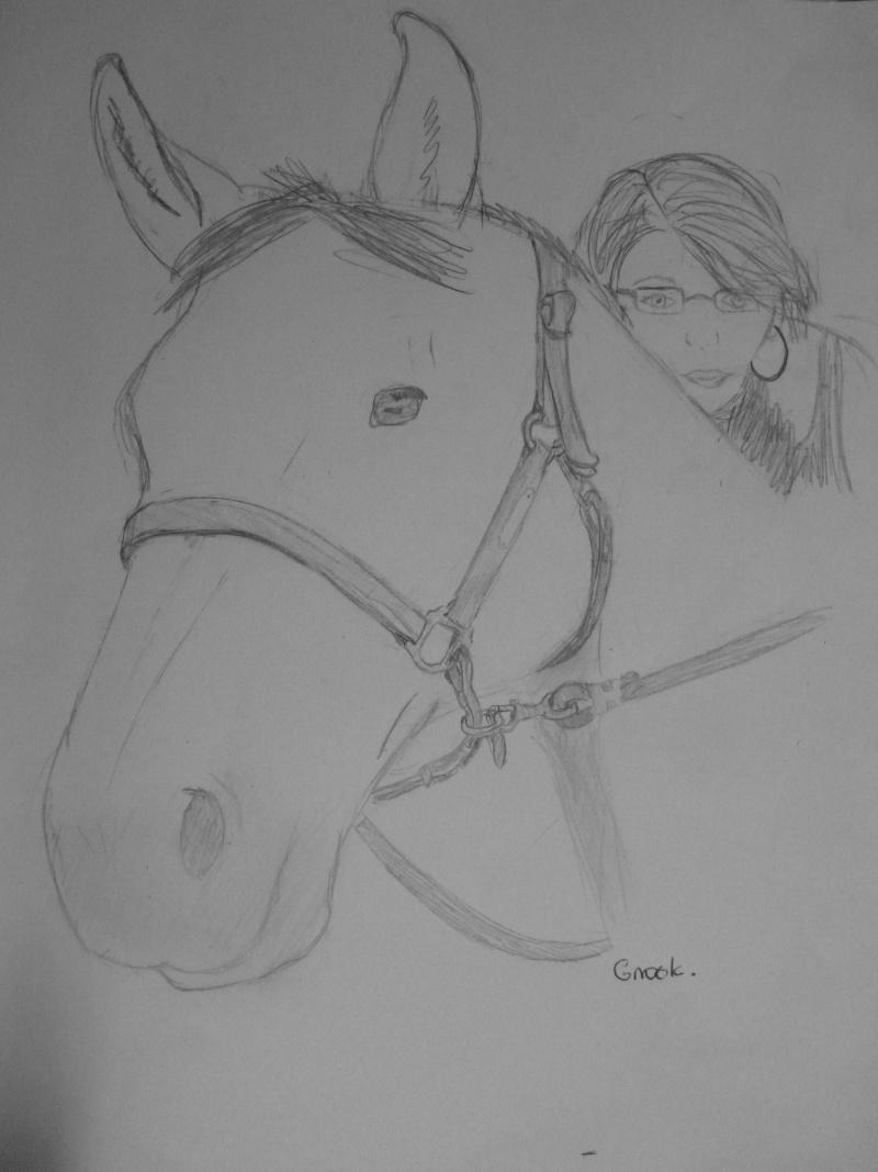 Propose de dessiner gratuitement vos chevaux !  - Page 2 P1030714