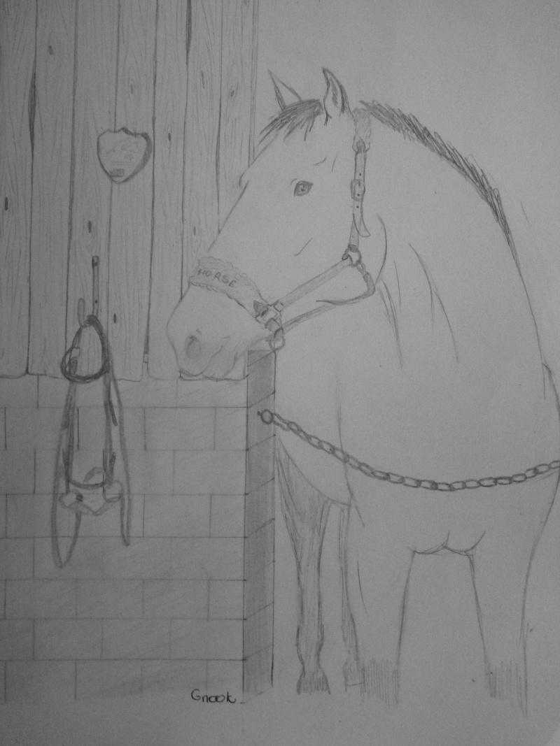 Propose de dessiner gratuitement vos chevaux !  - Page 2 P1030716