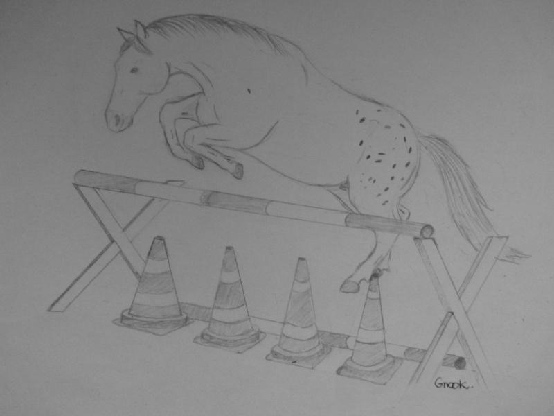 Propose de dessiner gratuitement vos chevaux !  - Page 3 P1030717