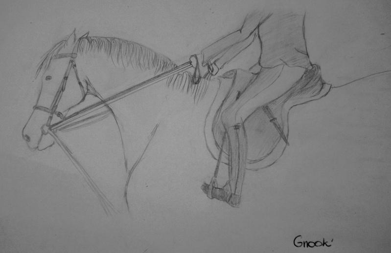 Propose de dessiner gratuitement vos chevaux !  - Page 3 P1030721