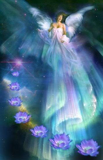 Angel Garden - Portail Ange_l10