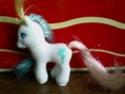 Je vous presente ma collection de poneys g2!! 06_ecl10
