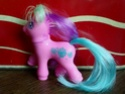 Je vous presente ma collection de poneys g2!! 09_con10