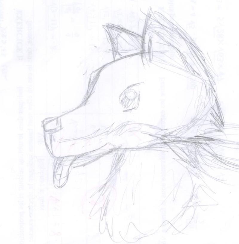 Vos dessins - Page 2 Chien-10