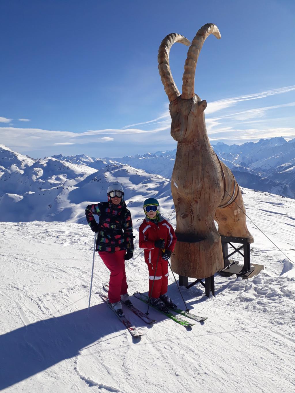 Pour les amoureux de la montagne et des sports d' hiver MAJ 2015 bas de page 4 - Page 3 20190221