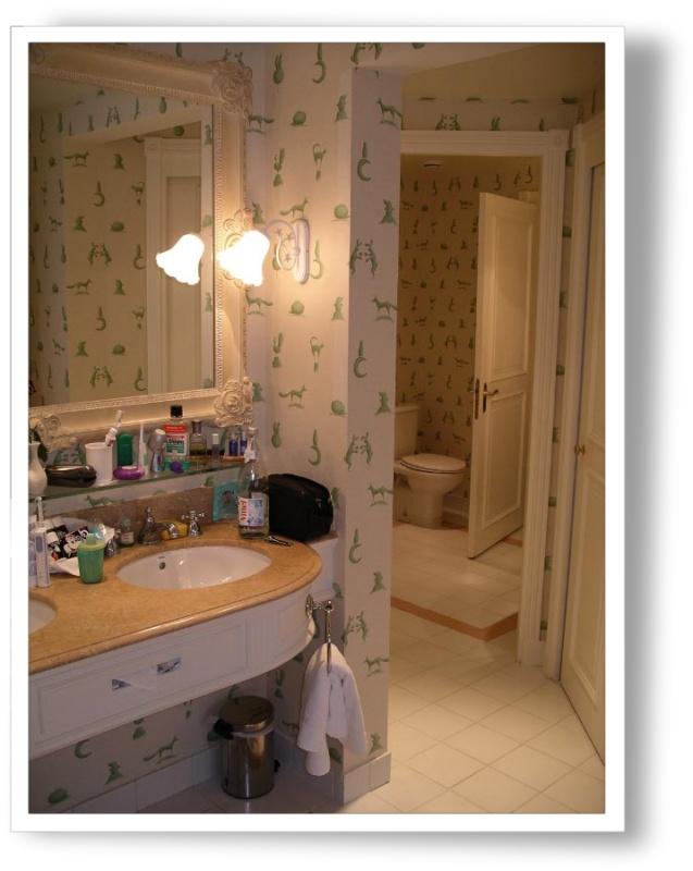 Disneyland Hôtel - Page 3 Bv000019