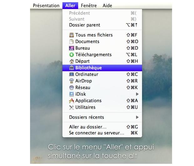 Fichiers Domain et Lion  Captur10