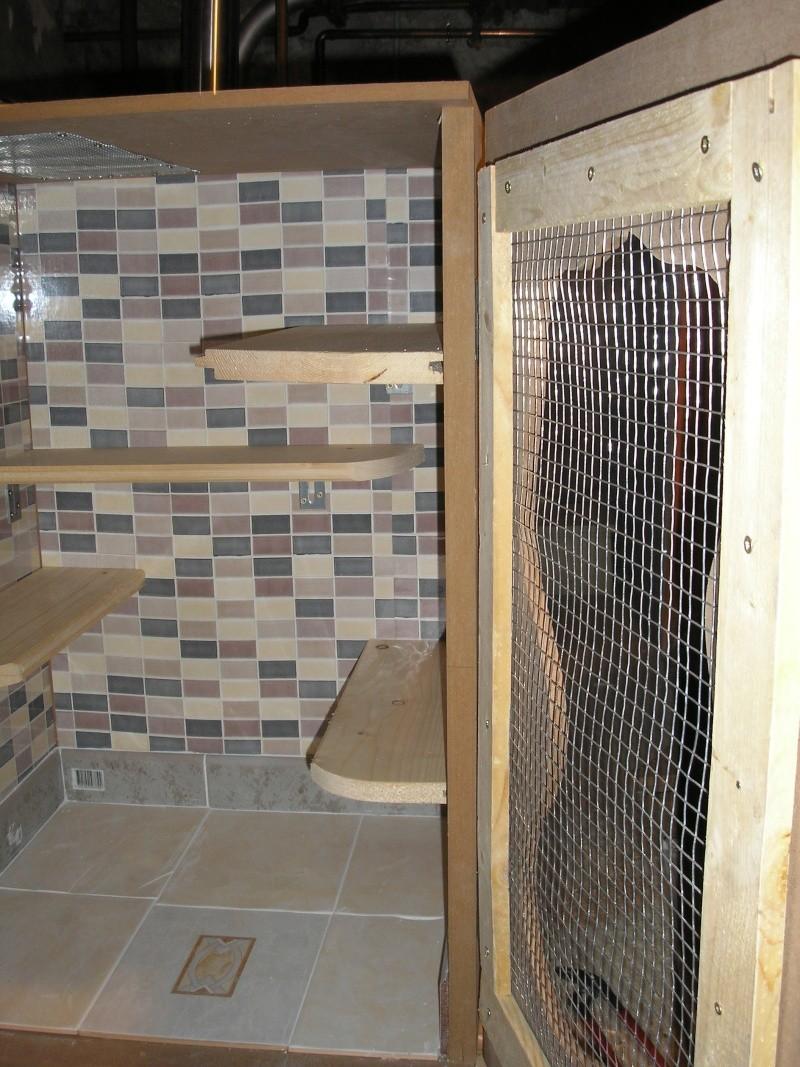 les cages  P9120013