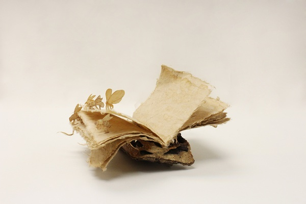 [Art] Livres objets-Livres d'artistes - Page 7 A370