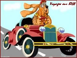 créer un forum : basset hound aventures - Portail Portai55