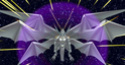 L'Alliance des Dragonniers Arton310